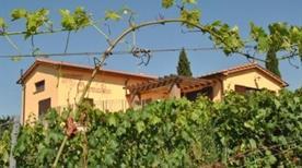 Quercialuce Azienda Vitivinicola - >Riparbella