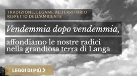 Saffirio Josetta - >Monforte d'Alba