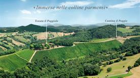 Tenuta Il Poggiolo Srl - >Parma