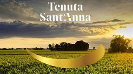 TENUTA S.ANNA - >Annone Veneto