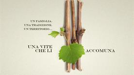 Zanatta Roberto | Azienda Vitivinicola - >Chiarano